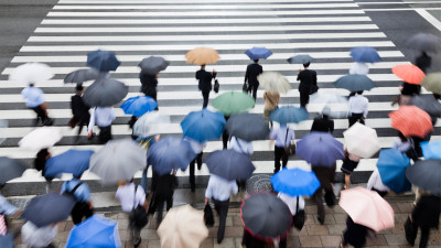 people with umbrellas crossing street during spring shower