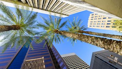 Find jobs in Phoenix now.