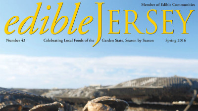Edible Jersey Cover spring 2016