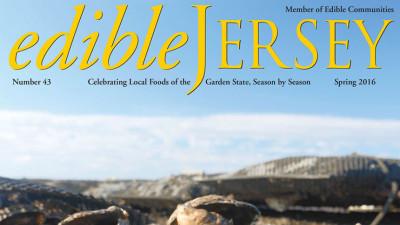 Edible Jersey Cover spring 2016